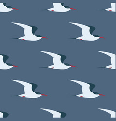 flying arctic tern seamless pattern vector image
