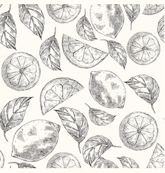 lemons hand drawn sketch seamless pattern vector image