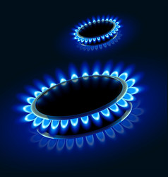 picture gas stove vector image