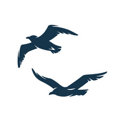 Seagull in sky for nautical marine design vector