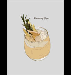 ginger rosemarry martini cocktail hand drawn vector image