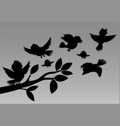 silhouette design of birds vector image
