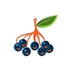 Chokeberry Flat Sticker vector image