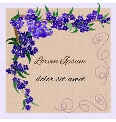 Invitation with watercolor lilac flowers vector