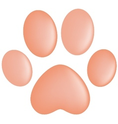 Paw Prints vector