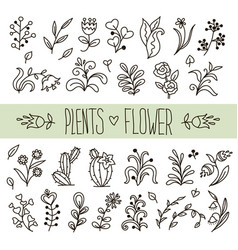 plants and flowers in doodle style vector image