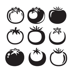 Tomatoes icon vector