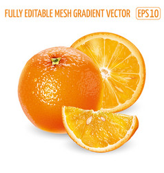 Whole orange with slices on a white background vector