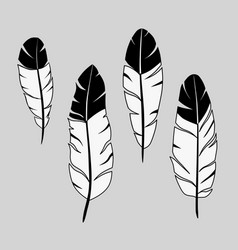 feathers ink hand drawn stock vector image vector image