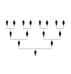 Family tree of several generations on white vector image vector image