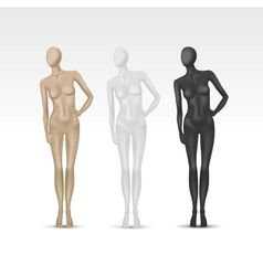 Isolated Female Mannequin vector image vector image