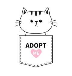 adopt me cat sitting in pocket pink heart vector image