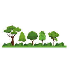 collection trees bush natural forest differents vector image