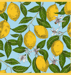 lemons hand drawn seamless retro pattern vector image