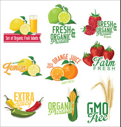 set of organic fruit labels vector image