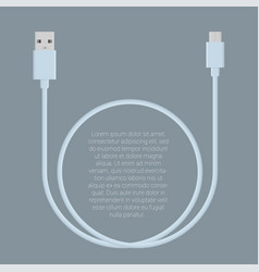 Usb data cable template vector