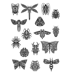 Insect animals tattoos and symbols vector image vector image