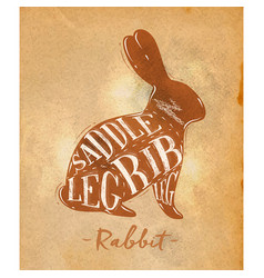 rabbit cutting scheme craft vector image vector image