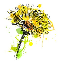 Colored hand sketch flower vector image vector image