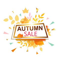 Banner for seasonal autumn sale vector
