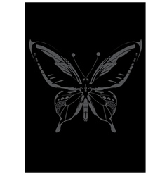 Butterfly decorative elements vector
