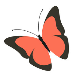 butterfly logo modern art colorful fashion vector image