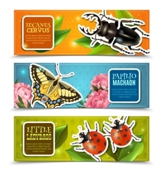 Insects Banners Set vector