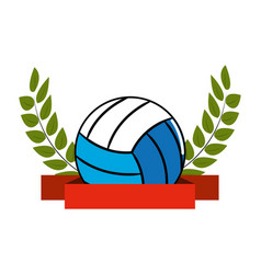 isolated volleyball design vector image