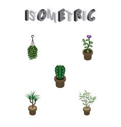 Isometric flower set of fern peyote blossom and vector