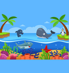 marine life in the ocean vector image