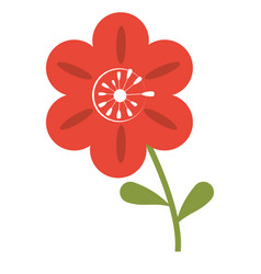 Petunia flower decoration image vector