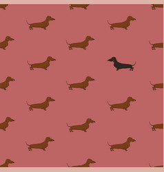 seamless pattern with dachshund dog vector image