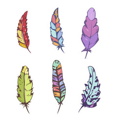 set of decorative hand drawn feathers vector image