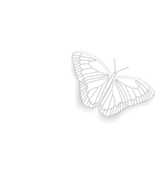 Butterfly with open wings vector image vector image