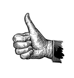 symbol thumb up hand gesture sketch vector image