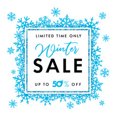 elegant winter sale banner vector image