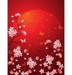 Sakura blossoms vector image