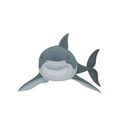 Shark swimming sea animal front view vector