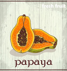Hand drawing of papaya Fresh fruit sketch vector image vector image