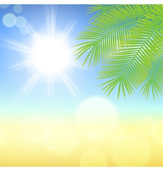 Sunny background with palm leaves vector image vector image