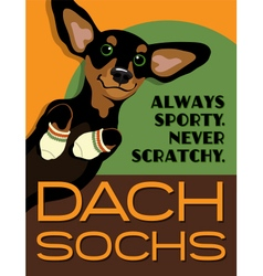 poster funny Dachshund dog vector image vector image
