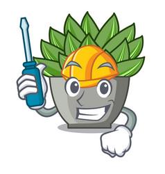 Automotive cartoon echeveria cactus in cactus vector