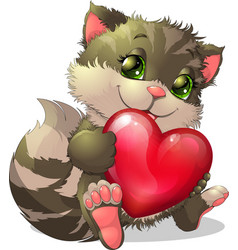 beautiful kitten vector image