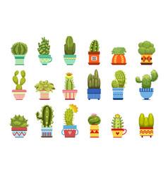 Cactus in pot set vector