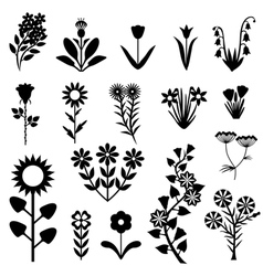 flower set black vector image vector image