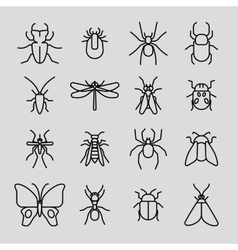 Insect thin line icons set vector