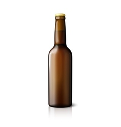 Blank brown realistic beer bottle isolated on vector image