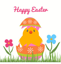Easter chick hatching from a decorative easter egg vector