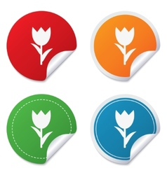 Flower sign icon Rose symbol vector image