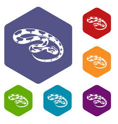 king snake icons hexahedron vector image